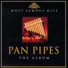 Most Famous Hits Pan Pipes
