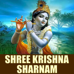 Shree Krishna Sharnam - Single