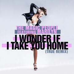I Wonder If I Take You Home (True Remix)
