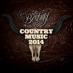 Best of Country Music 2014
