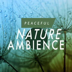 Peaceful Nature Ambience