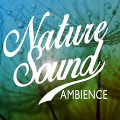 Nature Sound Ambience