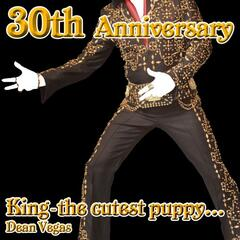 King (The Cutest Puppy) Elvis 30th Anniversary Special