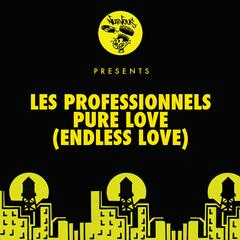 Pure Love (Endless Love)