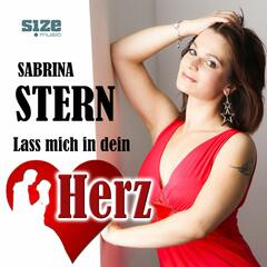 Lass mich in dein Herz (Disco Version)