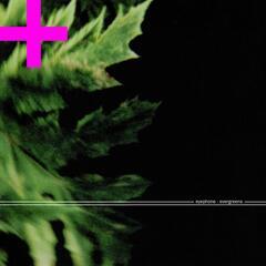 Evergreens+ (Enhanced Version)