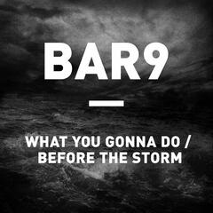 What You Gonna Do / Before The Storm