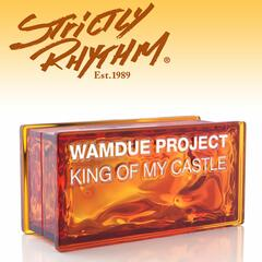 King of My Castle (Nicola Fasano & Steve Forest Mixes)