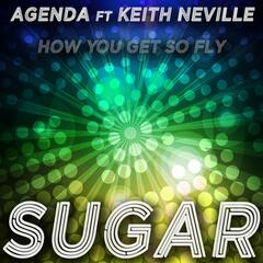 Sugar [How You Get so Fly]