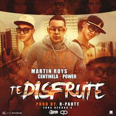 Te Disfruté (feat. Centinela & Power)