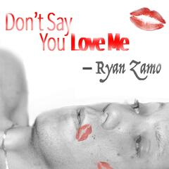 Don't Say You Love Me