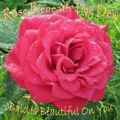 Rose Beneath the Dew / Bald Is Beautiful on You