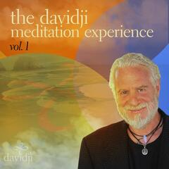 The davidji Meditation Experience, Vol. 1