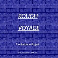 Rough Voyage (feat. Tom Formanek)