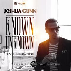 Known Unknown (feat. Ricco Barrino)