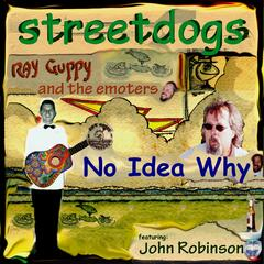 No Idea Why (feat. John Robinson & Ray Guppy and the Emoters)