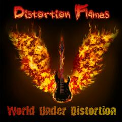 World Under Distortion