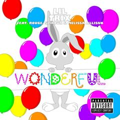 Wonderful (feat. Rouge, Slikour & Melissa Allison)