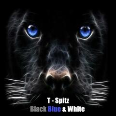 Black Blue & White (Panthers Nation)