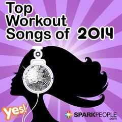 Sparkpeople - Top Workout Songs of 2013 (60 Min. Non-Stop Workout Mix @ 132bpm)