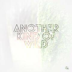 Another Kind of Wild