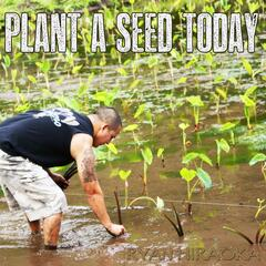 Plant a Seed Today