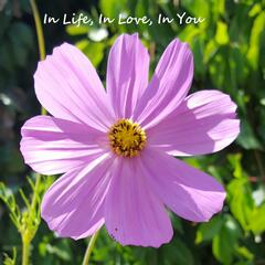 In Life, in Love, in You (feat. Eric Andersen)