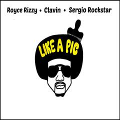 Like a Pic (feat. Royce Rizzy)