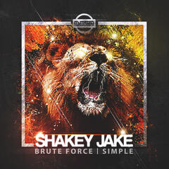 Brute Force/Simple