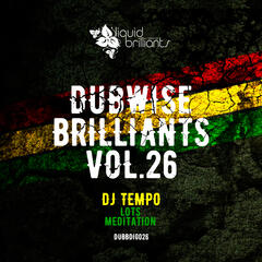 Dubwise Brilliants, Vol. 26