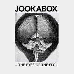Eyes of the Fly