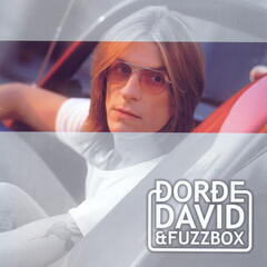 Djordje David i Fuzzbox