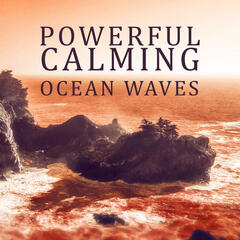 Powerful Calming Ocean Waves - Guided Meditation, Wellness, White Noise, Relaxing Ocean Wave Sound Effects, Pure Sound for Sleep, Massage, Spa, Reiki Healing