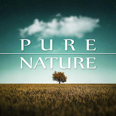 Pure Nature – Natural Harmony, Waves, Calm Music for Yoga, Massage Sounds, Spa Therapy, Nature Sounds, New Age