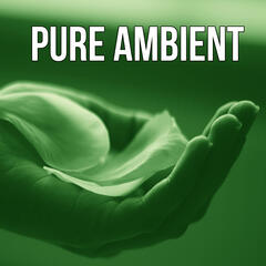 Pure Ambient - Nature Sounds, Mindfulness Meditation, Yoga, Stress Relief, Waves, Healing Massage, Relaxation, New Age