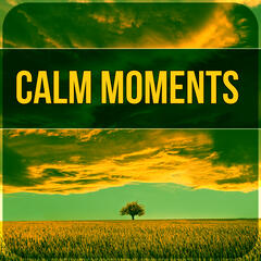 Calm Moments - New Age Music to Relax, Healing Sounds to Cure Insomnia, Chanting Om with Yoga Meditation, Calm Relaxation, Easy Listening