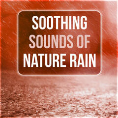 Soothing Sounds of Nature Rain - New Age Music for Training and Meditation, Calming Nature Sounds, Background Music for Massage Therapy