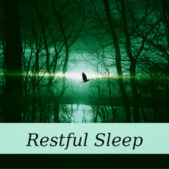Restful Sleep – Soft Music for Relaxation, Deep Sleep, Sounds of Nature, Healing Meditation, Total Relax, Healing Sleep, Ambient Music for Sleep