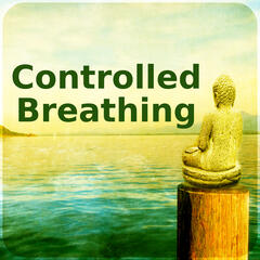 Controlled Breathing – Calm Nature Sounds to Relieve Stress, Music for Mindfulness Meditation & Relaxation, Hindu Yoga, Instrumental Music