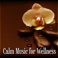 Calm Music for Wellness – Calm Music for Spa, Wellness Relaxation, Massage Piano Music, Aromatherapy Music
