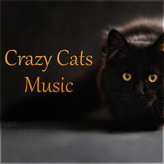 Crazy Cats Music - Relaxing Melodies to Calm Down Your Crazy Pet and Make Them Happy