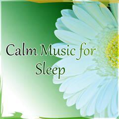 Calm Music for Sleep – Dreaming All Night, Time to Relax, Natural Stress Relief, Sensual Massage for Women