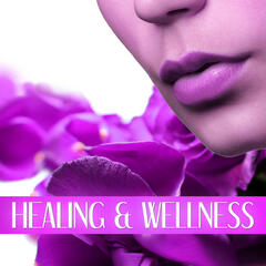 Healing & Wellness -  Spa Nature Sounds to Relax, Music and Pure Nature Sounds for Stress Relief, Harmony of Senses, Relaxing Background Music