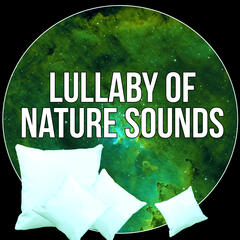 Lullaby of Nature Sounds - Best Sounds of Nature to Deep & Meditation for Adult and Baby, Relax After Heavy Day and Feel Positive Energy, White Noises and Nature Sounds to Relax and Fall Asleep