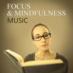 Focus & Mindfulness Music – Gentle New Age Music for Improve Concentration on the Tasks, Calm Down Emotions and Work Better, Music for Studying, Instrumental Relaxing Music for Learning