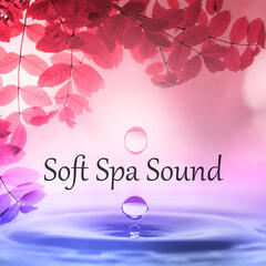 Soft Spa Sound – Deep Healing Relaxation, Pure Therapy Music, Purity, Beauty Center, Massage