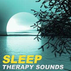 Sleep Therapy Sounds – Most Beautiful Soothing Sounds for a Dream