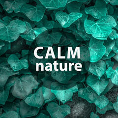 Calm Nature – Nature Music to Help You Relax, Soft Sounds, New Age Relaxation, Water Sounds