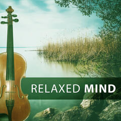 Relaxed Mind – Relaxing Time with Classical Music, Balm for the Soul, Piano Music, Classical Artists, Bach, Mozart, Beethoven