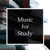 Music for Study - 20 Motivating Rain & Water Melodies for Study and Exam Success, Deep Focus, Relaxation and Meditation